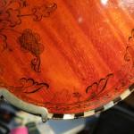 detail, beetle on mushroom
