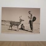 my favorite photo in the Tillmans exhibit